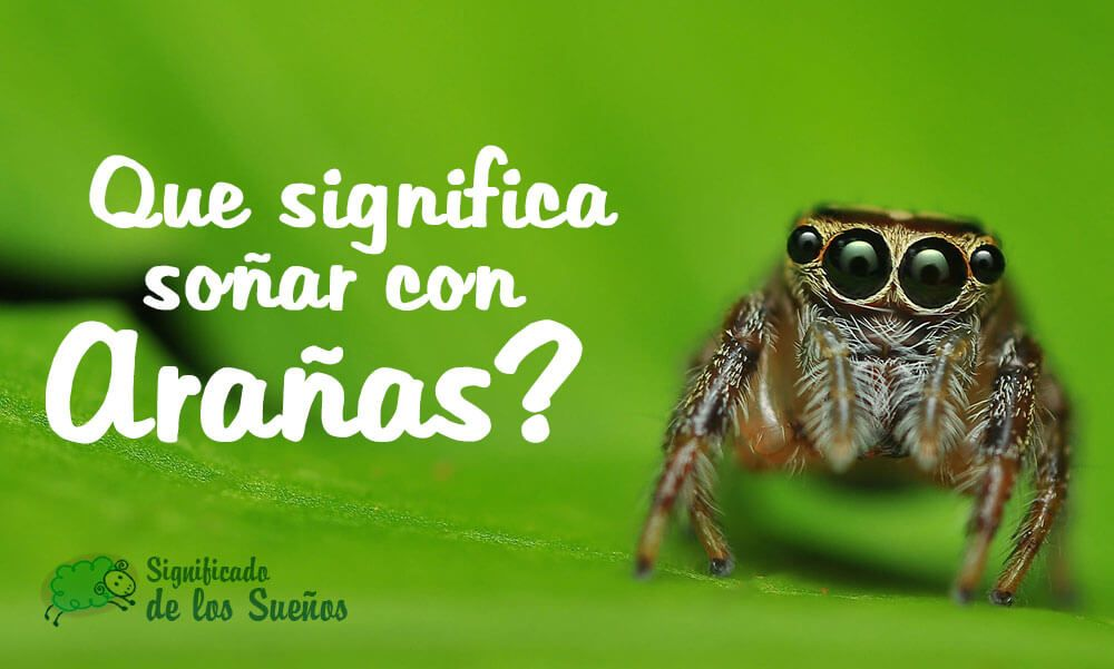 Que significa soñar con arañas?