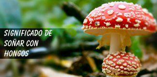 Soñar con hongos