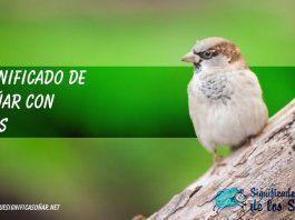 Soñar con aves