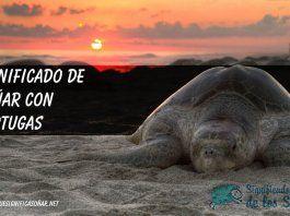 Significado de soñar con tortuga