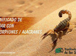 Soñar con escorpiones o alacranes